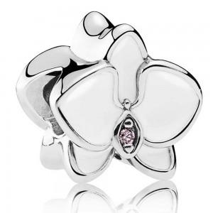 Pandora Bracelet Elegant Orchid Floral Complete Leather Jewelry